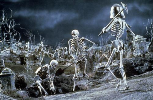 """""""In alto le ossa! Ci aspetta la battaglia!"""""""