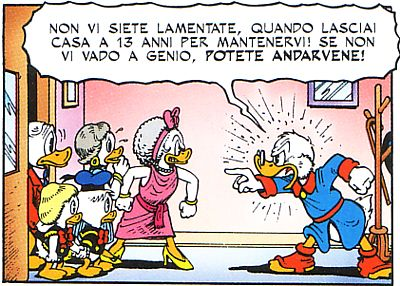 16171_duck_rottura